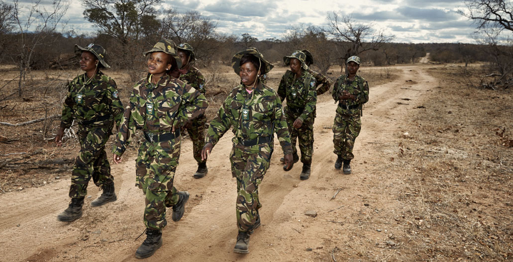 Black Mambas marching through Balule