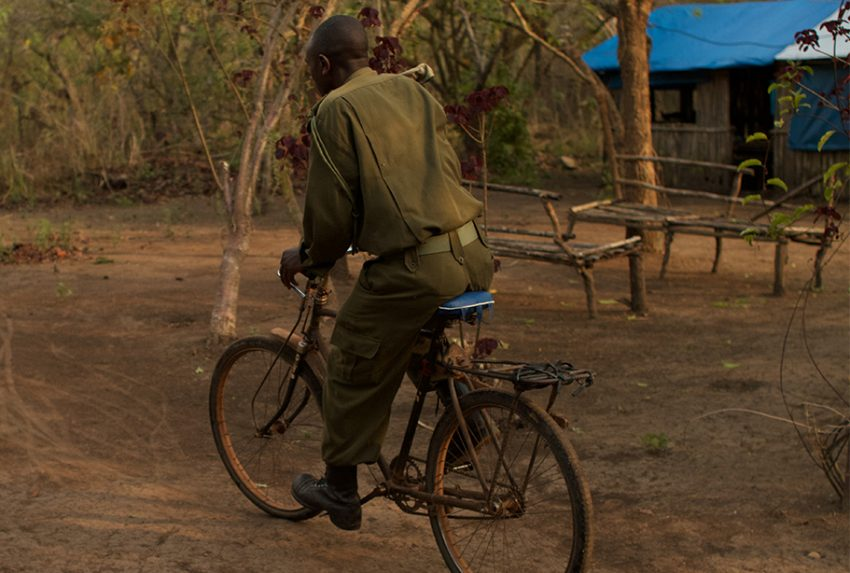 Tongwe Trust ranger on bicycle