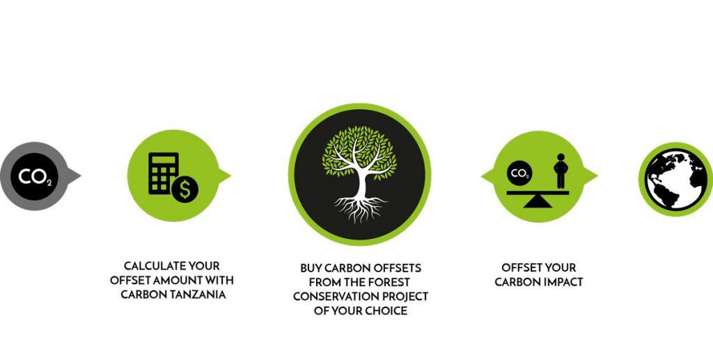 Carbon-Tanzania-FC-flowchart