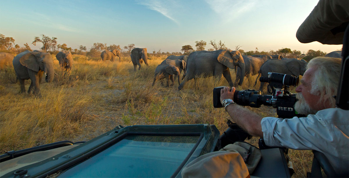 Dereck-photographing-elephants