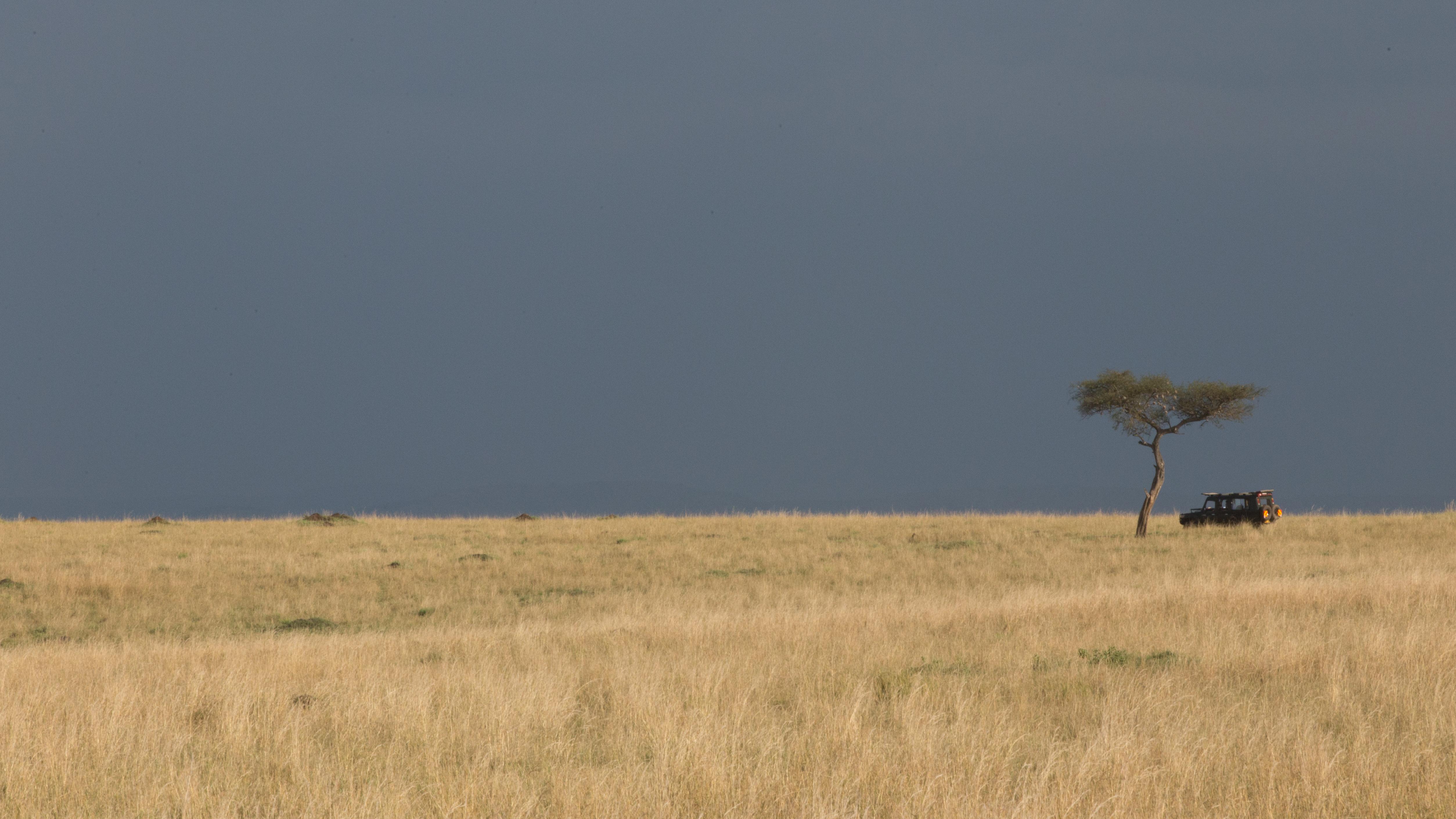 Maasai Mara- SimonJMorris-9