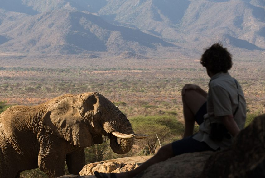 Sitting with Elephants at Sarara