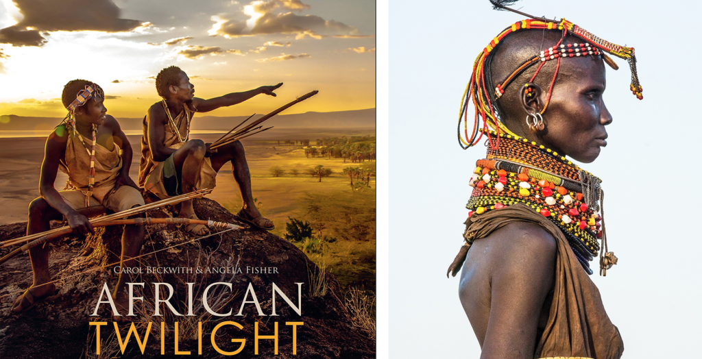 African Twilight Book